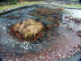 Pond Deicer: Information