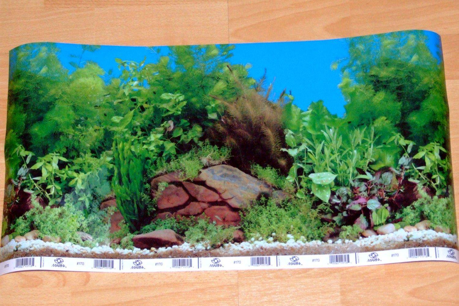 Fish tank painting - Aquarium Background Resized Image 1