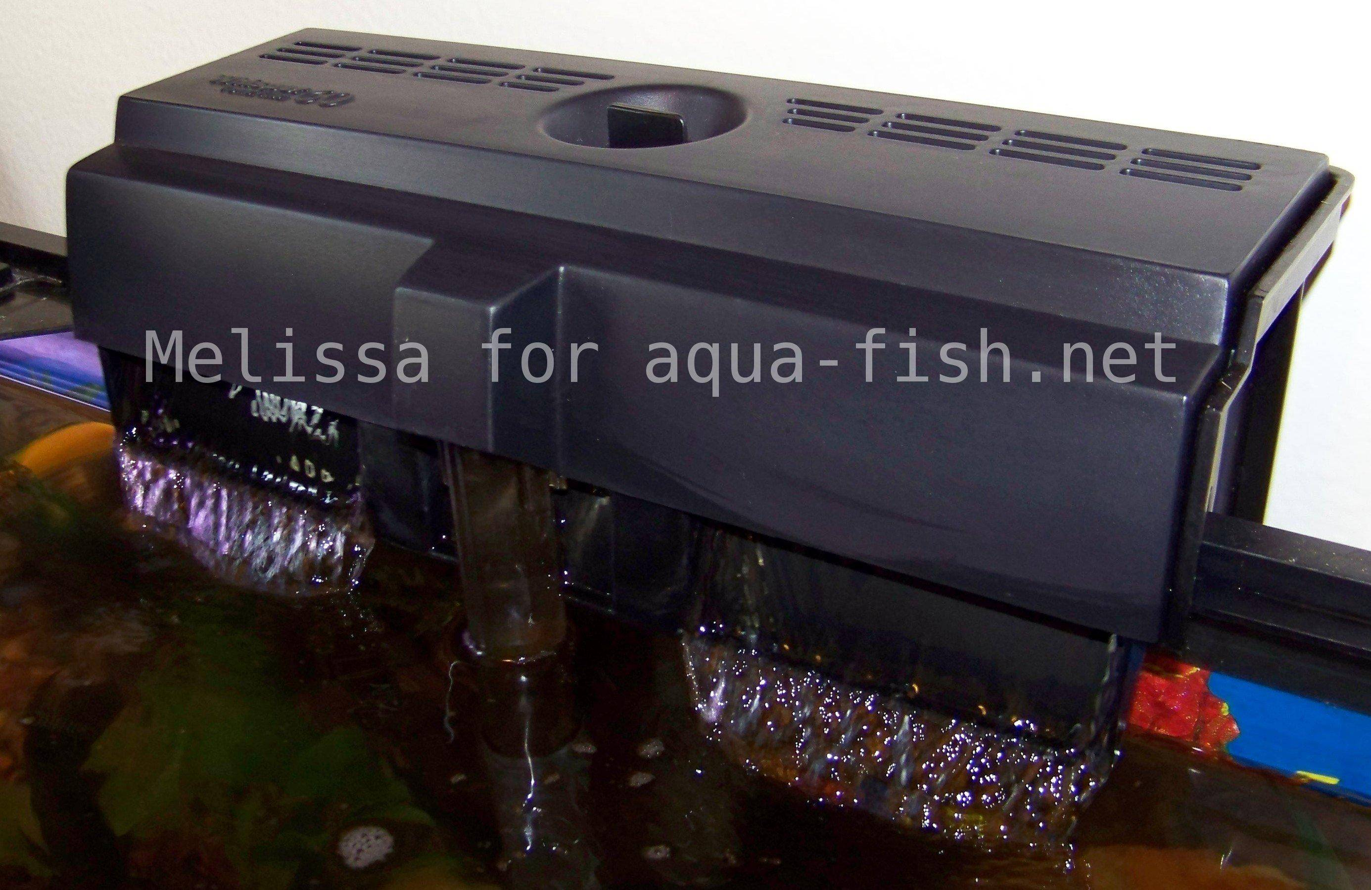 Filter fish tank water level filter free engine image for Fish tank filtration