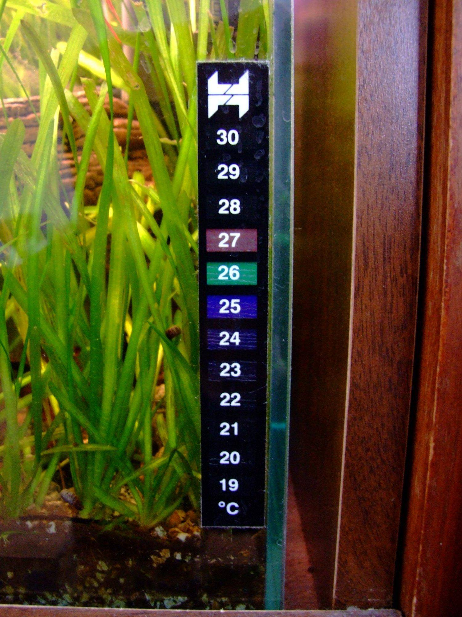 The purpose of aquarium thermometers with faq and forum for Aquarium thermometer