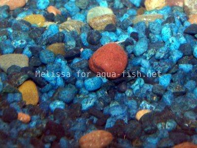 Colored aquarium gravel, picture 2