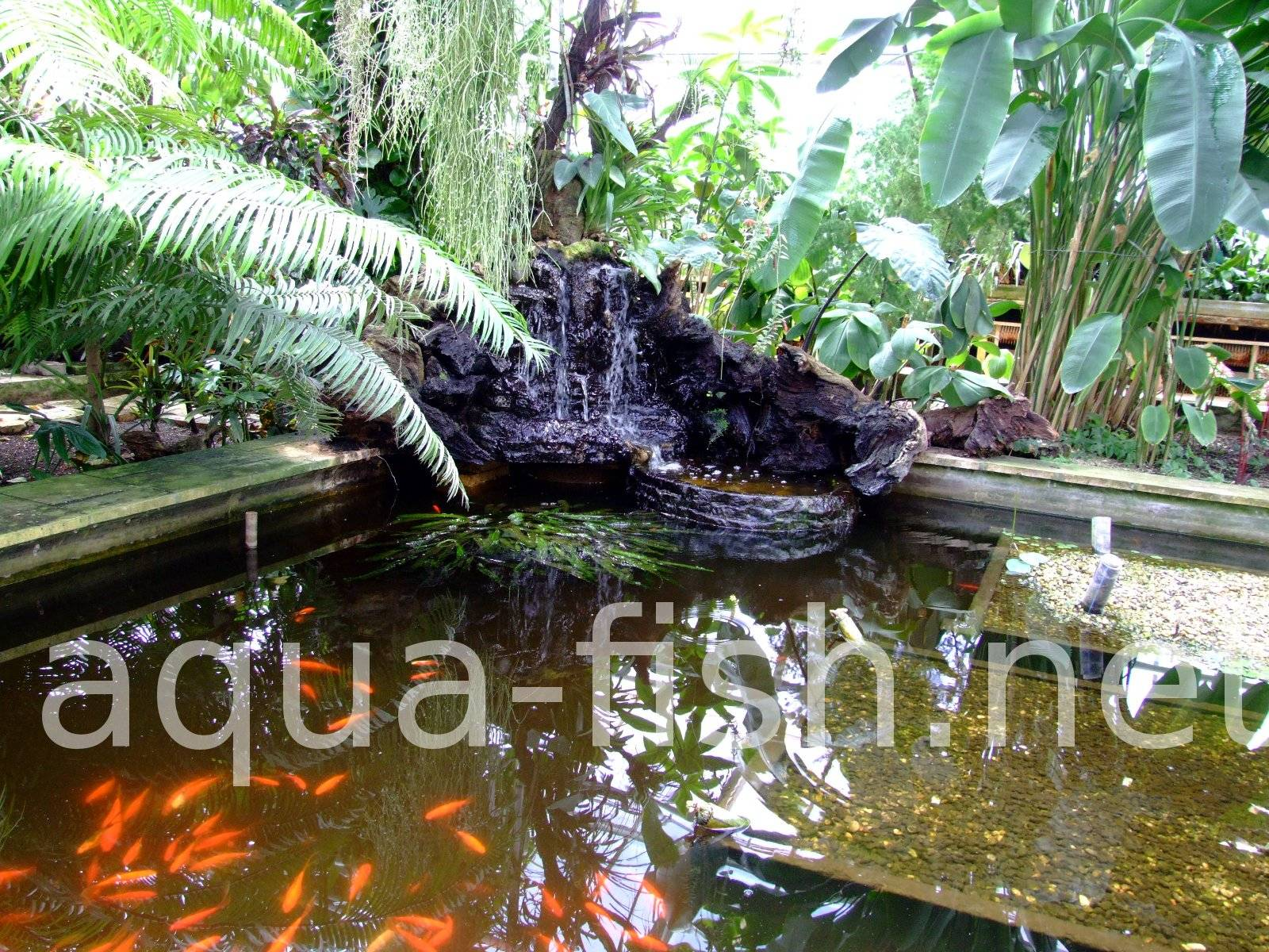 Ideas on building fish ponds along with images and discussion for Make your own pond