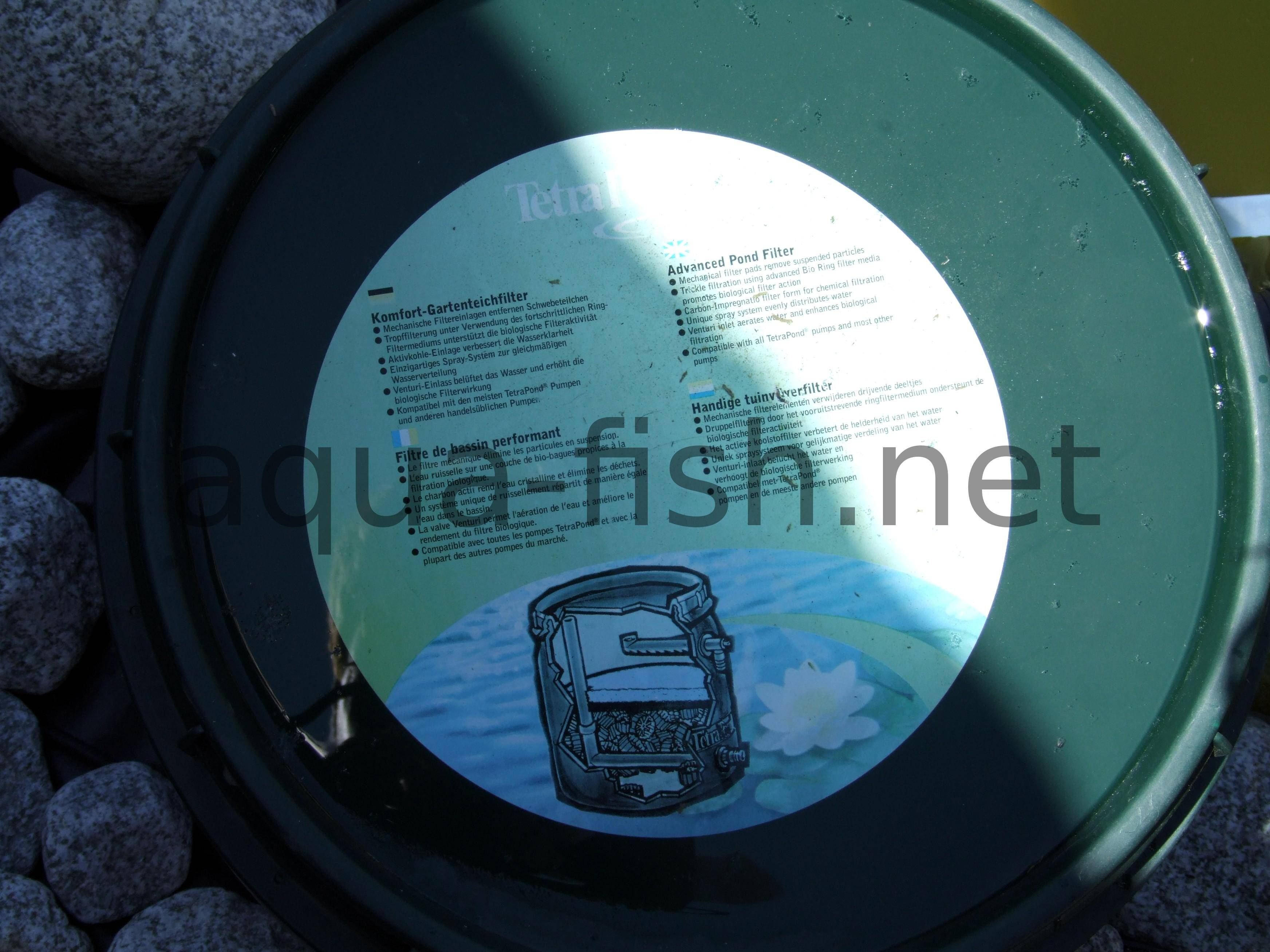 a prehensive guide on using and choosing filters for a fish pond