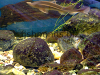 Aquarium rocks, resized image 3