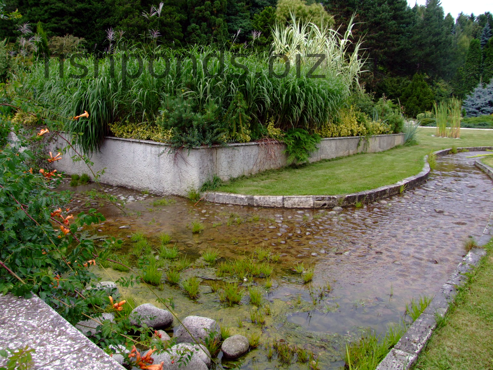 Ideas on building fish ponds along with images and discussion for Fish pond landscaping