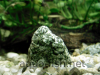 Aquarium rock, picture 3, added on Nov 13 2011